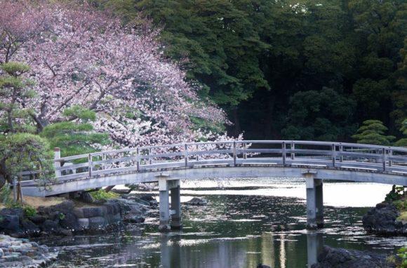 東京150年祭が浜離宮恩賜庭園で開催!アクセスや駐車場を紹介